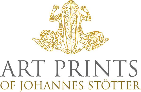 Bodypainting Art Prints of Johannes Stötter
